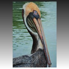 Large Oil Painting ~ Brown Pelican Portrait