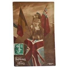 WW1 French Dog Postcard ~ Patriotic Pup