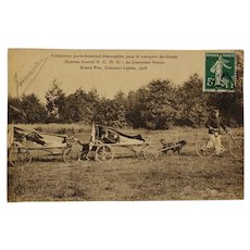 Early French Postcard ~ Ambulance Dogs Carting The Wounded