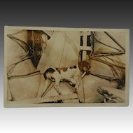 "WW1 Dog Mascot ""Cognac Off Watch"" RPPC Postcard"