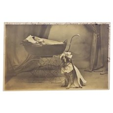 Antique French Postcard ~ Dressed Dog With Child