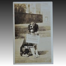 "Rare WW1 Red Cross Dog ""Victory"" Postcard ~ ""Khaki Club Campaign"""