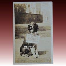 "Rare WW1 Red Cross Dog ""Victory"" Postcard ~ ""Khaki Club Campaign"""