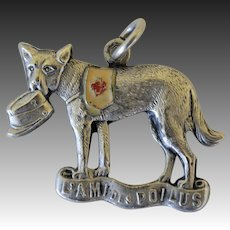 "WW1 French Red Cross Dog Fund Raising Medal ~ ""L'Ami Des Poilus"""