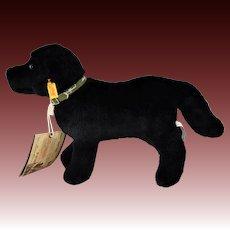 Vintage Steiff Eddie Bauer Black Labrador Dog