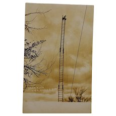 Antique RPPC Postcard ~ C.A. Wright's High Diving Dog
