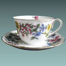 Shelley Demitasse: Hedgerow Pattern