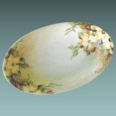 KPM oval dish              Circa - 1904-1938