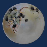 """Limoges Delinieres and Company  9"""" plate   circa: 1894-1900"""