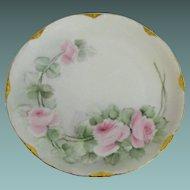 Antique Rosenthal desert plate