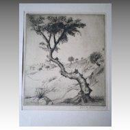 "Fabulous ""Elias Grossman (1898-1947)"" Etching - Tree in Haifa"