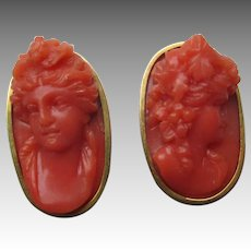 Gorgeous Carved Coral 14k Gold Earrings -