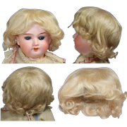 Beautiful French Blonde Human Hair Wig for Cabinet Sized Bisque Doll