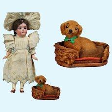 Darling Vintage German Doll Sized Dog Companion!