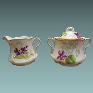 Creamer and Sugar Nosegay of Violets and Lily of the Valley Flowers Bavarian