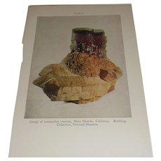 Tourmaline Crystals, Mesa Grande, California Color Plate