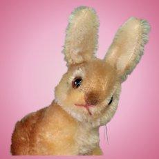 """Lovely Steiff Bunny """"Sonny"""" 4""""x6"""" Glass Eyes & Swivel Neck"""