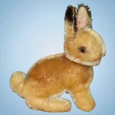 "Little ""Sonny"" Steiff Rabbit ~ Cute Little Bunny!"