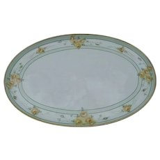 MZ Austria Hand-Painted, Oval Dresser Tray, Porcelain