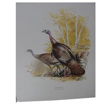 Field and Stream Portfolio of Game Birds by Ned Smith