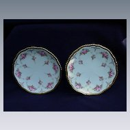 Copelands China Dessert Plates Rose Decorated, Retailed by Davis, Collamore & Co. Ltd.