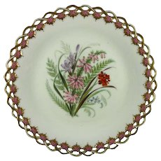 ROYAL WORCESTER c1869 Victorian wild flowers plate #4