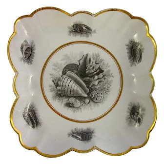 BARR FLIGHT & BARR c1810 antique Worcester bowl bat print shells gold
