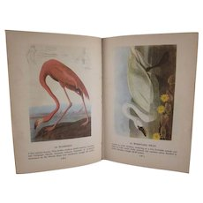 Audubon's Birds of  America Hard Back Book Popular Edition 1950 - Red Tag Sale Item