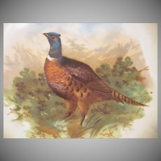 Made in Bavaria (Germany) Porcelain Hand Painted Pheasant Plate/Plaque Porcelain Moschendorf Factory