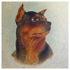 Antique Portrait Painting Terrier British School - Red Tag Sale Item
