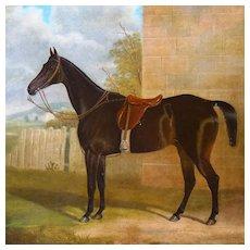 Antique English Horse Portrait Equestrian Painting