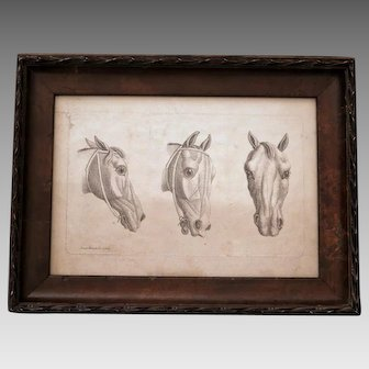 19th Century Horse Head Print After James Roberts