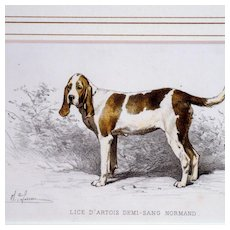 French Color Lithograph Hunting Dog Olivier de Penne Signed