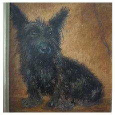 Early 20th Century Oil Portrait Black Terrier