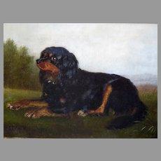 Antique Dog Portrait King Charles Spaniel by Johann Friedrich Wilheim Wegener