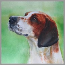 Hunting Dog Watercolor Portrait by Susan Dorazio