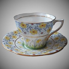 1920s 1930s Hand painted English Bone China Cup Saucer Rosina Narcissus