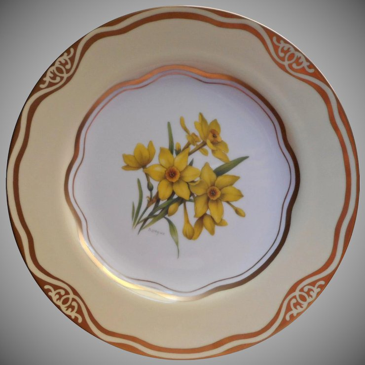 Daffodil Dinner Plate Flowers Of The First Ladies Martha Washington : dinner plate flowers - pezcame.com
