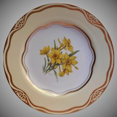 Daffodil Dinner Plate Flowers Of The First Ladies Martha Washington