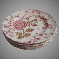 Rose Chintz Vintage Johnson Brothers England 5 Bread Plates
