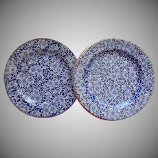 1846 to 1860 Cork And Edge Pottery Antique Blue Transferware Plates Hawthorn Pattern