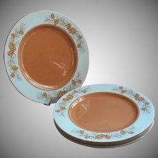 1950s Azure Pine Taylorcraft Taylor Smith Taylor Dinner Plates Vintage China