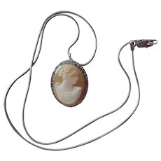 Shell Cameo Pin Pendant Vintage On Sterling Silver Chain