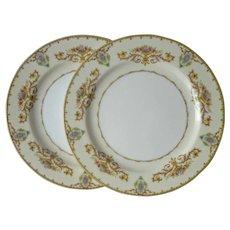 Noritake Arabella 2 Dinner Plates Vintage