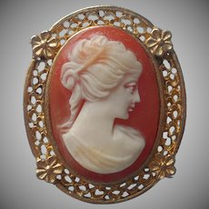 1970s Resin Cameo Vintage Pin Filigree Frame