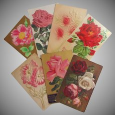 Antique Roses Postcards Post Cards All Roses Okay One Is A Poppy