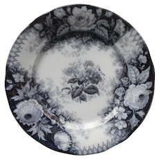 Antique Villeroy and Boch Transferware Plate Jardiniere Pattern Blue Back