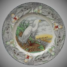 Audubon Birds Of America Plate Adams China Snowy Egret Vintage