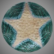 Victorian Majolica Plate Cauliflower Star Antique Etruscan