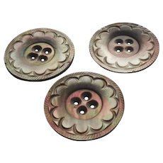 Antique Buttons Carved Gray Mother Of Pearl Set 3 Large